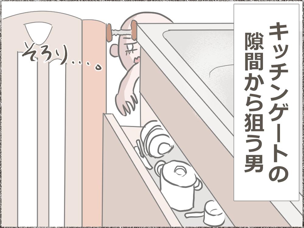 キッチン用ベビーゲートの隙間から狙う男 ベビーゲートの隙間から、手を伸ばし、棚の中を触ろうとするくまゴロー。