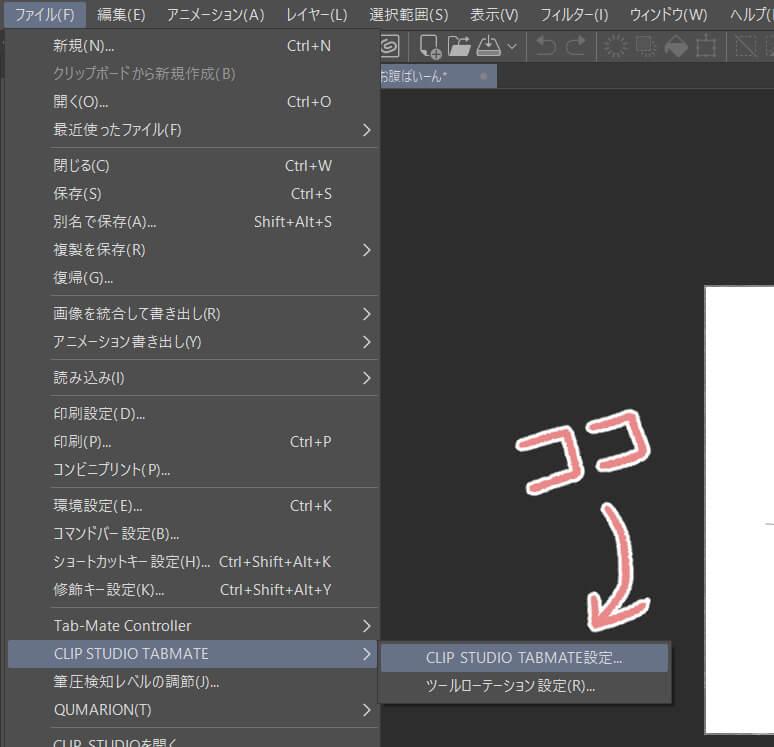 CLIP STUDIO TABMATE設定・使用方法レビュー